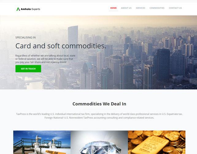 Website Design Of AMHOLA EXPERT