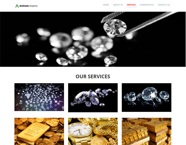 Website Design Of AMHOLA EXPERT