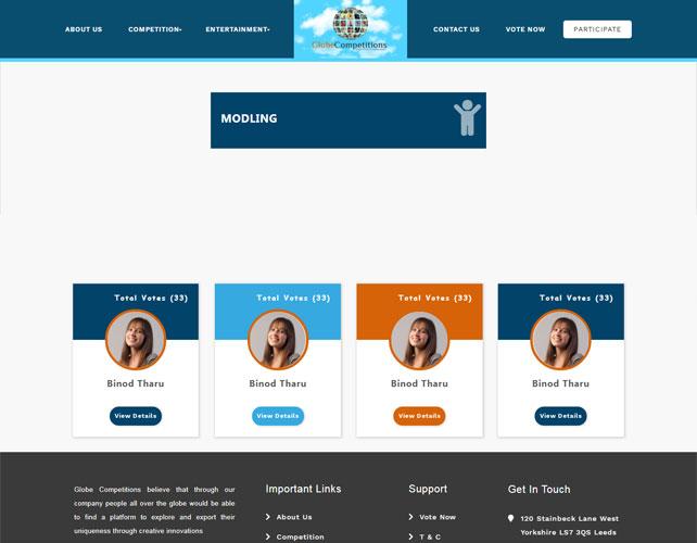 Entertainment  Website Design