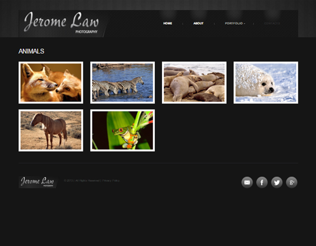 Website for Photographers