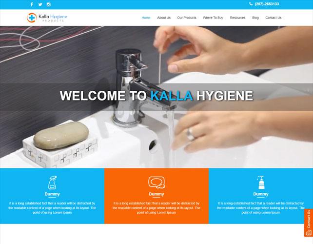 Hygiene Based Website Design