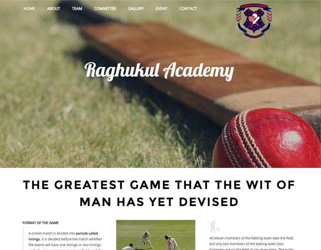 Cricket Academy Website Design