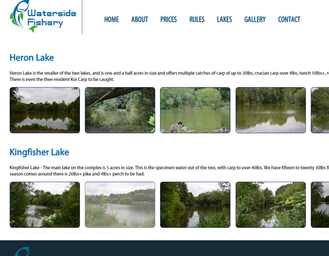 Web Design for Fishery Business
